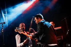 Ed Sullivan Quartet XXL-14.jpg (bart_salembier) Tags: musician music nikon 60s stage band d750 nikkor sixties kortrijk schouwburgplein perfomance coverband sinksenfeesten sinksen theedsullivanquartet theedsullivanquartetxxl