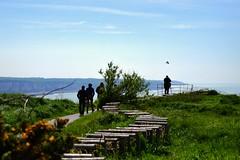 Vol au dessus d'un promeneur (Corinne Lejeune Girot) Tags: sea sky mer bird silhouette flight ciel walker normandie vol oiseau promeneur normandi