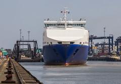 Britannia Seaways (Mickoo737) Tags: roro dfds dfdsseaways