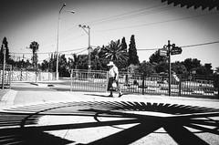 clockwork life (Ran Elmaliach) Tags: street old people blackandwhite musician white black monochrome photography blackwhite gr performer ricoh ricohgr strret jendrix56 ranelmaliach
