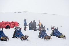 Svalbard 2016-487 (Cal Fraser) Tags: camp people snow max norway svalbard arctic sj sledge spitzbergen roberthill nickellis bobhill svalbardandjanmayen alfraser alistairfraser gregmaxted haavardkaarstad hvardkrstad