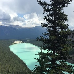 Tea House Trail (andrewireland92) Tags: lake canada mountains pinetree forest banff lakelouise glaciallake