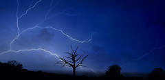 Path of Lightning (Mark Looker) Tags: lighting blue fiction sky storm tree silhouette landscape photography photographer photos mark writer author thunder looker struck