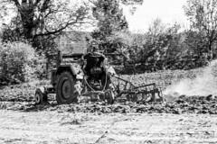 top-speed (Fotos aus OWL) Tags: traktor landwirtschaft bulldog lanz schlepper traktorentreffen