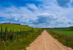 Castilla y su cielo (Jesus_l) Tags: espaa europa valladolid camposdecastilla sanmartndevalven jessl