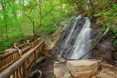 Juney Whank Falls (PhotoJacko - Jackie Novak) Tags: bridge portrait nature landscape waterfall spring environmental wideangle f28 smokymountains greatsmokymountainsnationalpark 14mm rokinon juneywhankfalls