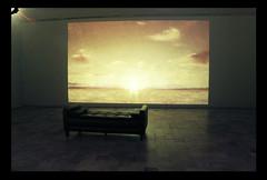 Van Gogh Alive. (Leandra Fiori) Tags: sunset canon experience alive van gogh turin vangogh canoneos600d