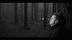 """""""You know I let you down. And now I'm on my own."""" (Johan Gustavsson) Tags: trees blackandwhite bw me rain self rainy cinematic regn johan trd svartvit svartvitt johangustavsson sb900"""