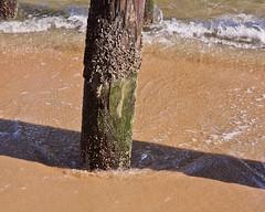 Ocean Grove, New Jersey (flickr4jazz) Tags: us newjersey unitedstates nj boardwalk jerseyshore oceangrove