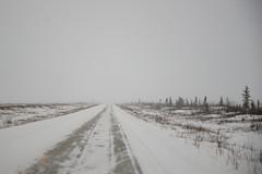 Winter Driving on the Richardson (Lee Petersen) Tags: snow ski mountains ice alaska ak class mountaineering range fairbanks deltas universityofalaska