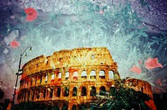Doubled Colosseum (saviorjosh) Tags: travel italy holiday rome flower film lomo lca xpro lomography fuji doubleexposure slide colosseum velvia crossprocessing poppies 100 colosseo rvp may2011