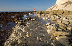 _MG_3724-Edit.jpg (woolyboy) Tags: uk lighthouse seaweed reflections chalk rocks cliffs lowtide eastsussex beachyhead sigma1020mm clearbluesky woolyboy