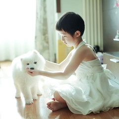 girl playing with a little dog (Bobi-home) Tags: family dog pet white girl puppy warm princess little samoyed lovely