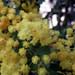 DE.2012.03.22.Stuttgart.WIlhelmaDSCF3832