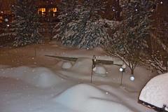 Beautiful Snowfall (thegreatlandoni) Tags: snow backyard colorado denver iphoto suburbs snowfall