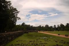 Angkor Wat-Road