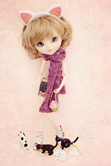 Cat Lady ( Pretty Pullip ) Tags: cats cute toy sanrio plastic groove pullip fashiondoll mymelody asiandoll junplanning kittehs pullipmymelody