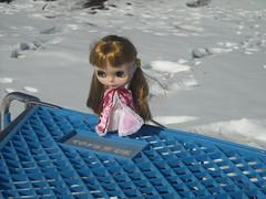 janie in a cart