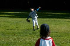 Baseball 65 (Thomas Wasper) Tags: timmy brea timtom ponyleaguebaseball