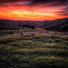 take the long way home [+1 in comments] (elmofoto) Tags: sunset red green northerncalifornia landscape fav50 fav20 norcal fav30 hdr highdynamicrange 500x500 1000v fav10 tonemapping fav40 fav60 flickraward elmofoto lorenzomontezemolo