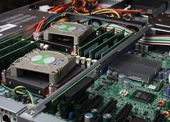 New Server (Zuiko Mike) Tags: cactus computer cpu motherboard ram zuiko server trigger v4 cactusv4 macro50mmf35