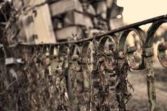 Rusty (Dacoanva) Tags: old rusty banister