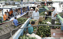 Floating-Market-frust.alt (hanoitouronline) Tags: halongbaytours traveltohanoi bookflightticket sapatrekkingtours booktrainticket hanoitoursinformation halongbayonalovacruises ninhbinhecotours hanoionedaytours halongbayonedaytours vietnamhoneymoontours hanoigolftours hanoivillagestours rentthecars