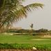 Golf-2182