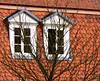 (:Linda:) Tags: roof two castle window germany tile town weimar thuringia belvedere schloss dach pediment dachziegel baretree gaupe dormer rooftile gaube twowindows mansardroof wimperg mansarddach mansardendach dachgaupe dachgaube dachschindel beavertailshaped frenchroof fishscalepattern bekrönung verdachung curbroof zweifenster fishscalepatternroof kragdach curbedroof fischschuppenmuster