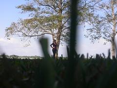 Entre naturaleza (Caneckman) Tags: parque naturaleza animales tabasco villahermosa vegetacion yumka