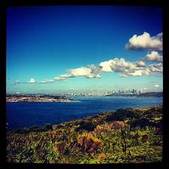 Good morning, Sydney
