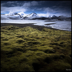 Lost in Iceland (Michel Delli - Photographies) Tags: mountain snow nature montagne canon iceland moss neige 1740mm islande wonderworld canon1740f4lusmgroup 5dmkii