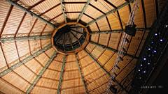 Teatro Circo Murcia (Ainatt) Tags: roof españa teatro spain theater play circo interior stage seat ceiling murcia playhouse techo playacting