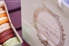 The Taste of Paris / Ladure's Macarons (Luluwh Al Omari) Tags: macro photography al sony omari macarons macaron ladure luluwh colorfulmacrons