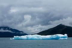 _MG_4895a (markbyzewski) Tags: alaska ugly iceberg tracyarm