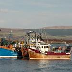 Tobermory Boats
