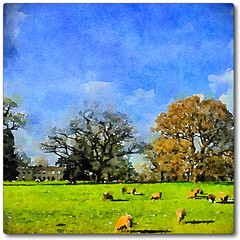 Day 124 of 366 - Berkswell Hall! (editsbyjon) Tags: sky tree field grass landscape sheep outdoor serene iphone berkswell photoborder iphone365 iphoneography snapseed phototoaster exposergl waterlogue