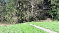 20160331_091224 (ks_bluechip) Tags: creek evans trails preserve sammamish usa2106