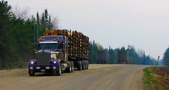 Outta the Cedar (jr-transport) Tags: ontario logger custom heavy kenworth w900 w900l cedarnarrows