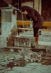 Watering place (anatoliimalikov) Tags: street water fountain girl cat drink