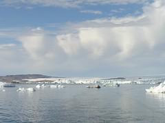 118 Upernavikgletsjer P1010326 (pdp.osdorp) Tags: sneeuw ijs groenland ijsberg upernarvik