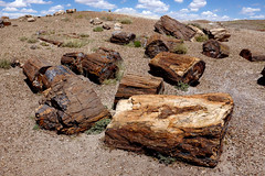 Petrified Logs, Arizona (thatoverallsguy) Tags: park arizona cliff rock digital forest landscape photography fuji desert outdoor hill formation national fujifilm mountainside petrified foothill crag x100t