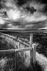 Edge of the Storm (miniwaites) Tags: england sky blackandwhite cloud storm water monochrome grass rain weather clouds fence river mono suffolk moody unitedkingdom sony stormy gb nik posts nex hff iken a6000 silverefex happyfencefriday niksuite