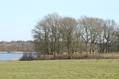 187 Haithabu Wall WHH 26-03-2016 (Kai-Erik) Tags: archaeology wall museum germany geotagged deutschland stadt ostern markt vikings viking tyskland steinmetz weber oldenburg schleswigholstein bcker schneider goldschmiede huser wikinger siedlung wmh archologie vikinger stadtwall wikingermarkt osterwochenende haithabu arkeologi slesvigholsten tpfer danewerk vikingr haddebyernoor arkologi hedeby whh slesvigland wikingerzeit heddeby danevirke heiabr heithabyr heidiba vikingrkontor httpwwwhaithabutagebuchde spielzeugmacher bogenbauer bernsteinschleifer geweihschnitzer glasperlenmacher handelsmetropole httpwwwschlossgottorfdehaithabu danwirchi vikingehuse vikingetidshusene bronzegieser frhmittelalterlichestadt 26032016 26thmarch2016 03262016 museumsfreiflche 6frhjahrsmarkt 300handwerkerundhndler 26mrz2016 geo:lat=5448974644 geo:lon=956720025