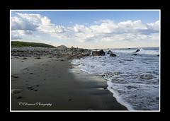 Sand and Foam (windshadow2) Tags: ocean morning light reflection beach sunrise sand wideangle foam omd em1 gooseberryisland