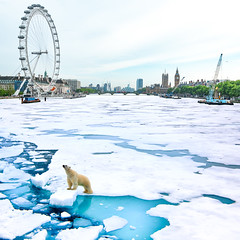 Ice breaker (james.popsys) Tags: bear uk abstract london ice composite thames photoshop melting surreal adobe iceberg polar conceptual warming global