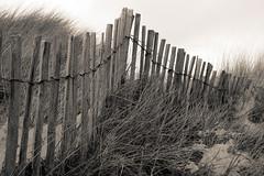 La dune (Yvan LEMEUR) Tags: dune bretagne plage guidel barrire