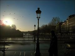 Dog Day Sunrise ~ Paris ~ MjYj (MjYj) Tags: city bridge light sky urban dog sun man paris love silhouette seine contrast sunrise garden soleil day factory lumire fear pluie notredame ciel pont eden reflexion homme passant mjyj mjyj
