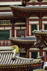 Buddha Tooth Relic Temple, Singapore (Tony Glvez) Tags: canon tooth de geotagged temple eos high singapore asia buddha south chinese east resolution alta guide chines singapur buda templo singapura chino relic guia gds cingapura resolucin 550d geolocated resoluao geolocalizada geoetiquetada geoposicionada geopositioned