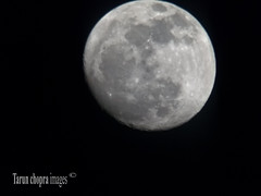 IMG_0410 (Tarun Chopra) Tags: moon night gurgaon s100 canonpowershots100